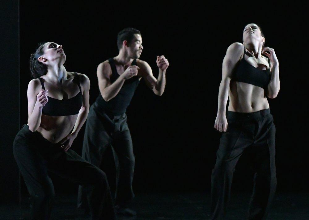 Beast Phoenix Dance.jpg