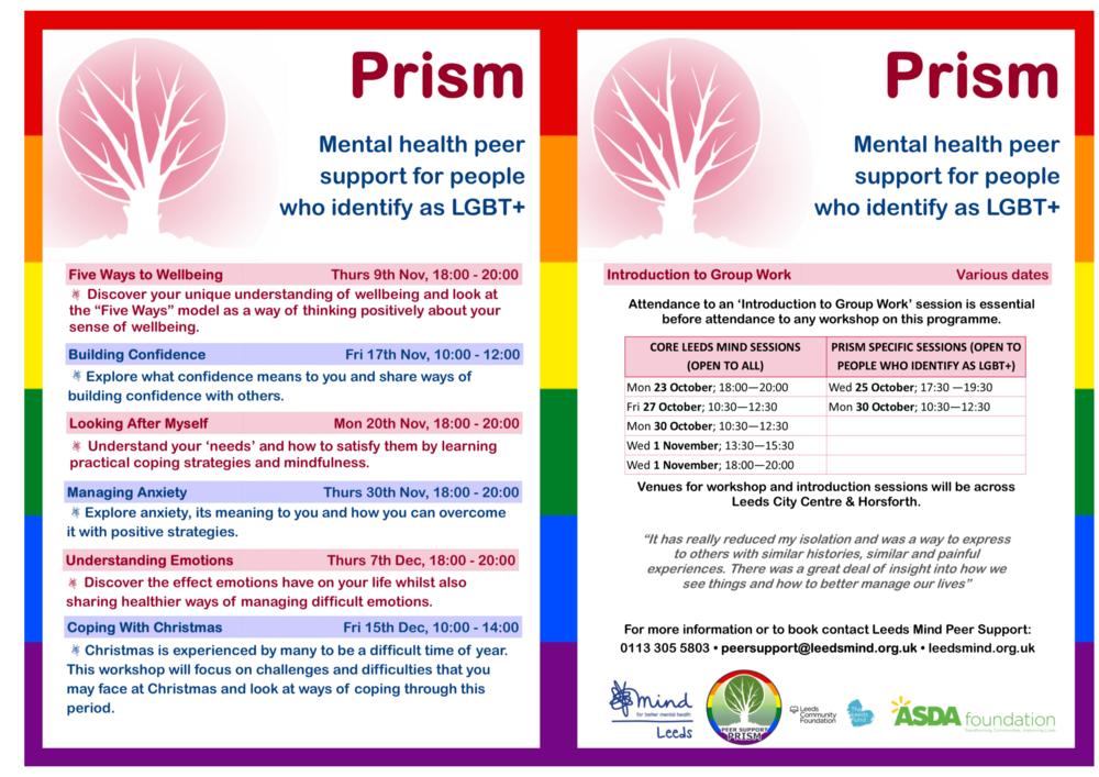 PRISM Peer Support Programme - Nov-Dec (2) (2).png