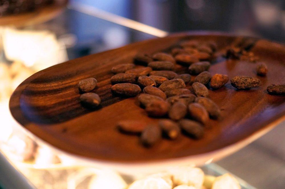 R+C-Leeds_Restaurant_Cocoa-Beans-1_CREDIT-EM-SHELDON (1)-min.jpg