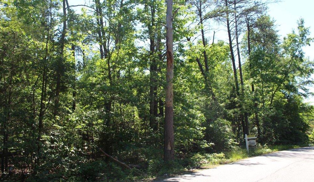 3504 Summit Crossing Road 22408 1.JPG