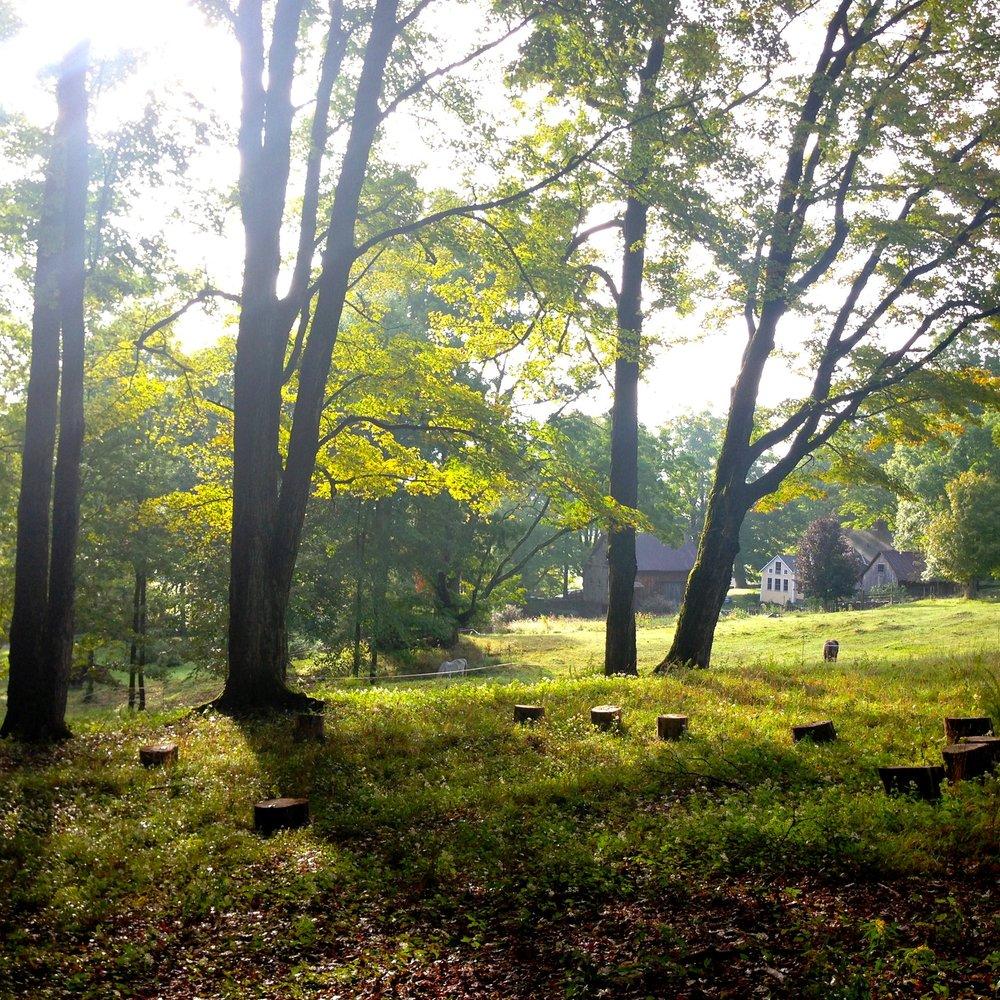 sun-hill-farm