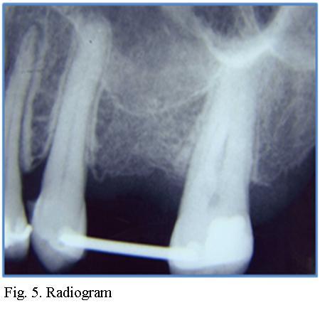 Dr. Palencar 5.jpg