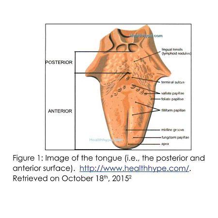 Dr. Iova Pic 1.jpg