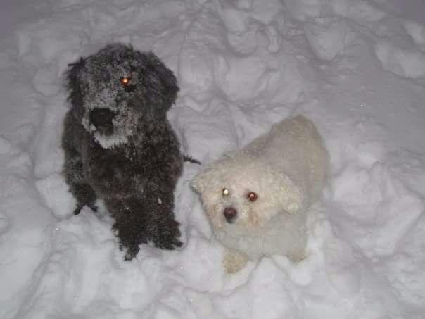 Milla & Venla