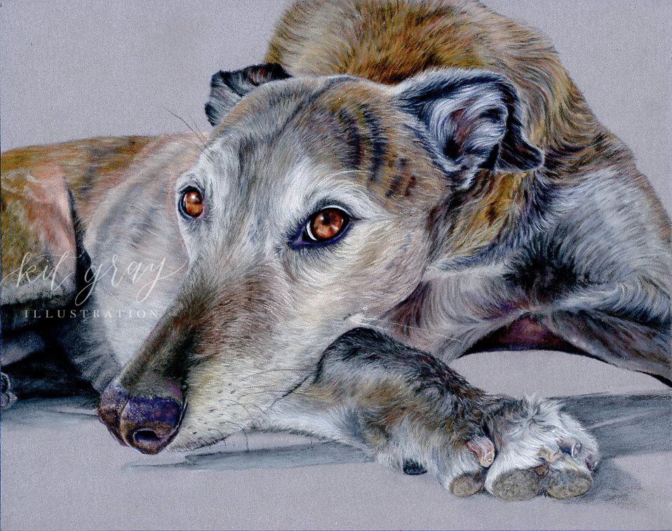 "Madeye - Greyhound in Pastel, 9"" x 12"" [FOR SALE]"