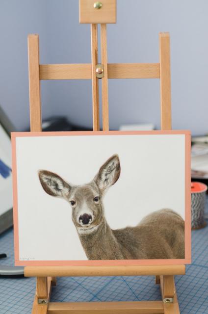 """""""Mule Deer"""" - Original 9"""" x 12"""" Pastel Painting"""