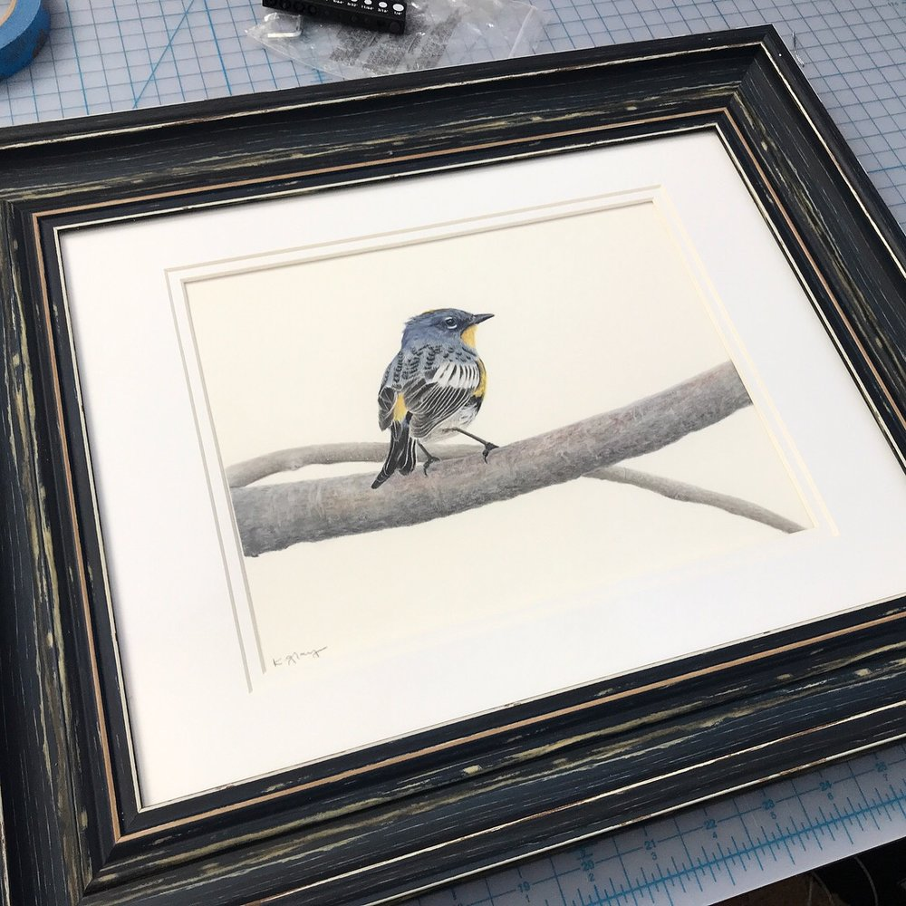 """""""His Finest Attire"""" - framed and now sold"""