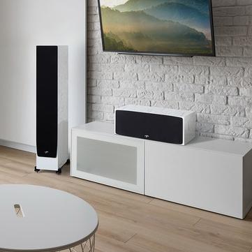 Paradigm speakers -