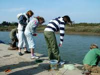 crab-fishing-Norfolk.jpg
