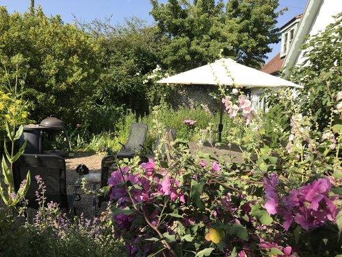 Blakeney-cottage-hollyhocks-garden.jpg