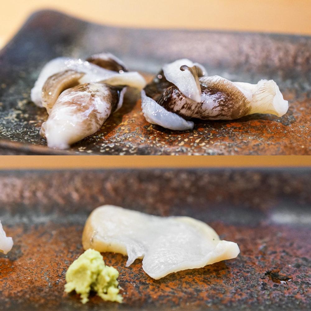 鳥貝、ツブ貝 | Tori-gai, Tsubu-gai