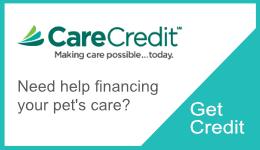 Care Credit link