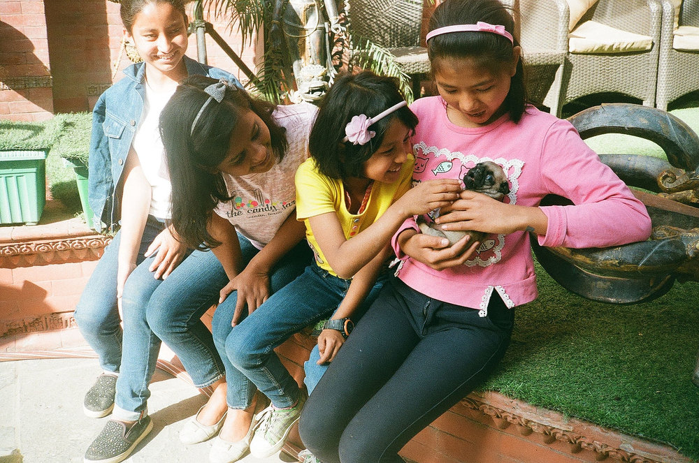 During our trip, we eagerly welcomed a new member to the Love Does Home - a baby pug named Oskar! We love watching the way these girls care for each other and now this little guy!