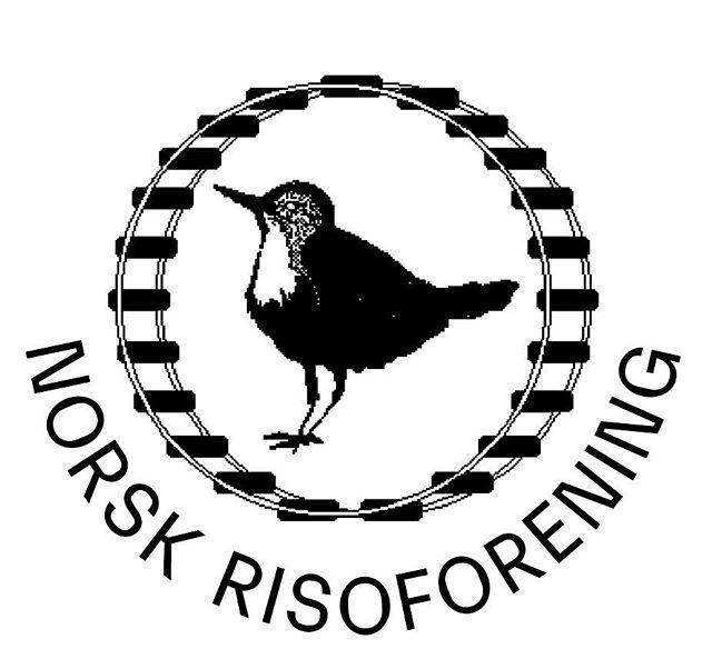 "Follow @risoforeningen for Norwegian risograph publishers and related events! Organized by @undsowalter @hverdagbooks and Pamflett. The typo is from Norwegian excellences @monokromskriftforlag The bird is the Norwegian national ""fossekall"""