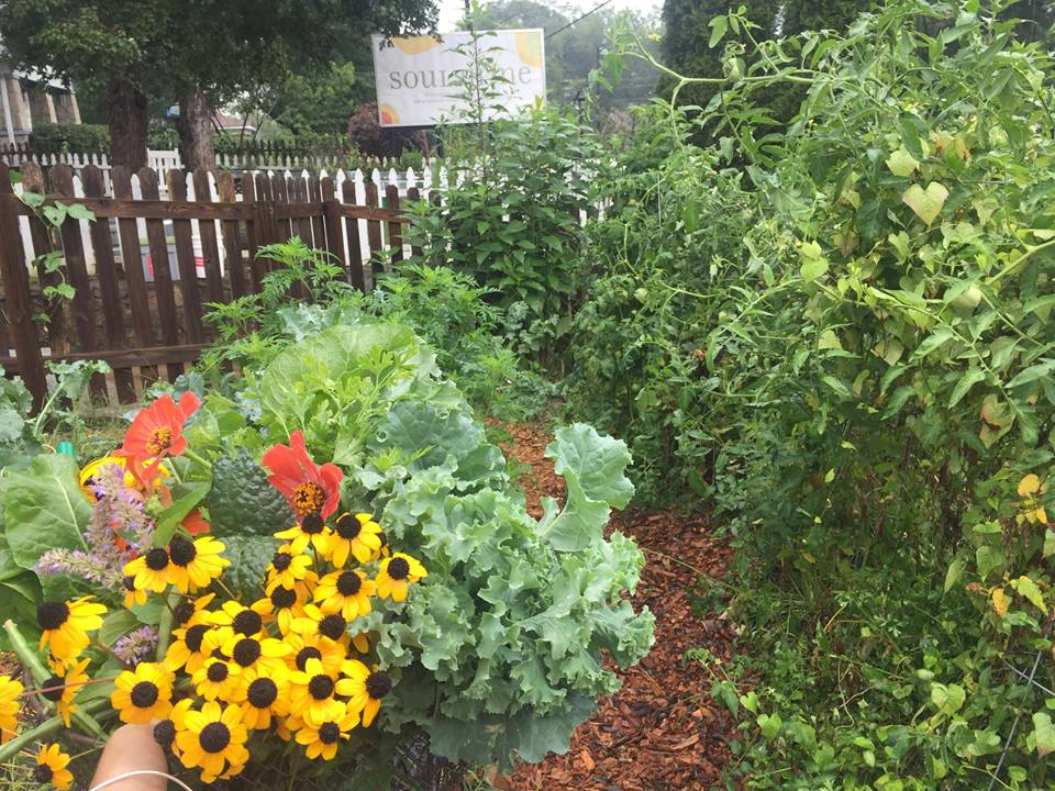 Harvest and garden at Kirkwood in August of 2017.
