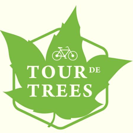 Tour de Trees.png