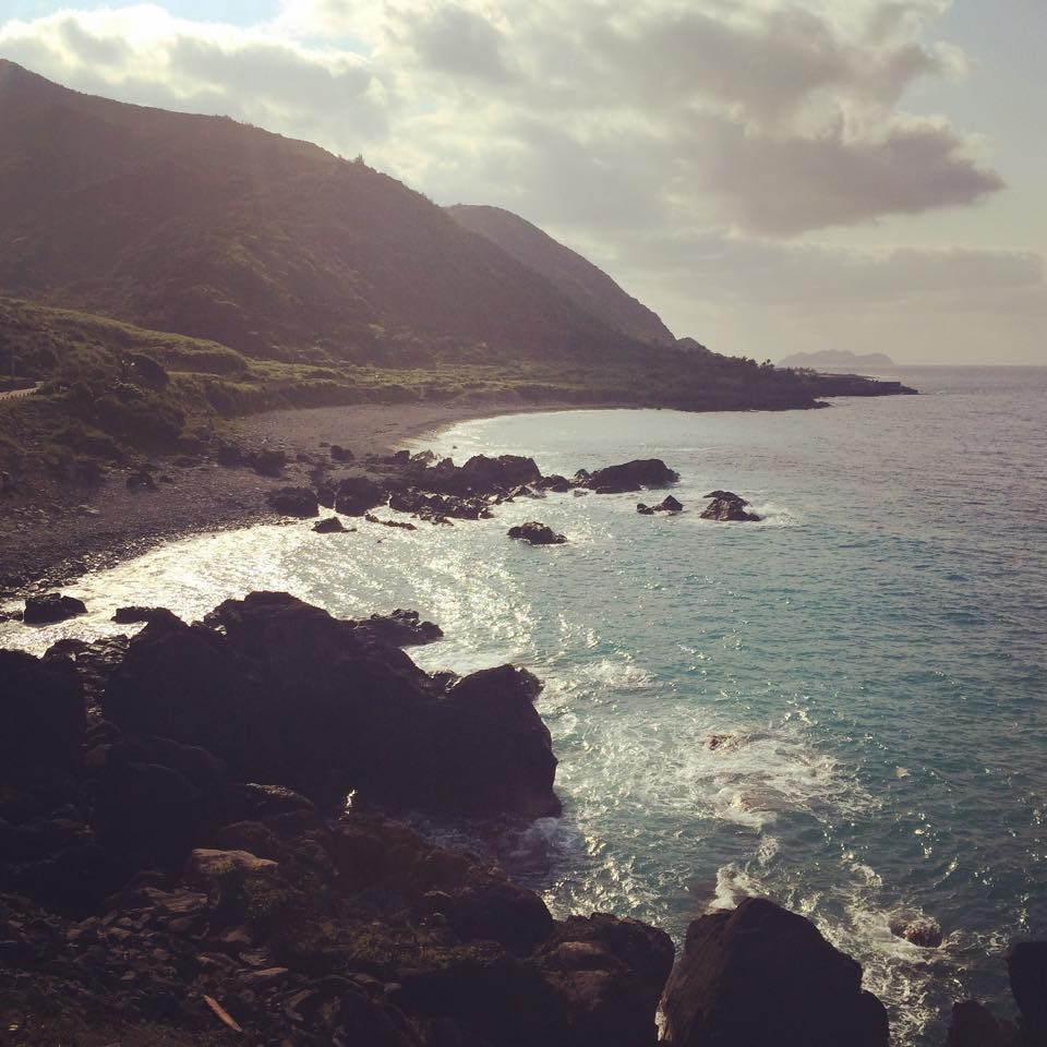 ORCHID ISLAND 3.jpg