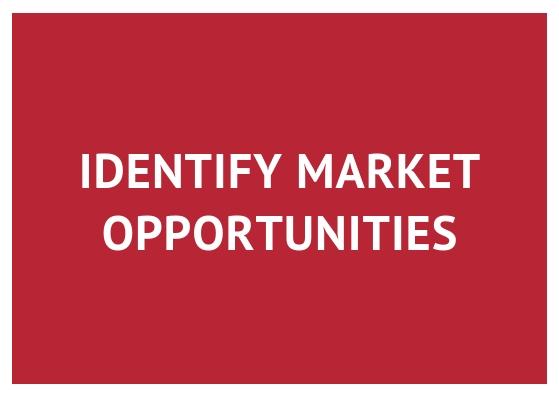 Identify market opportunities.jpg