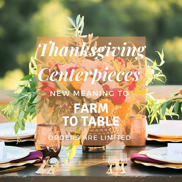 #McAlester friends we are still taking orders for Thanksgiving Centerpieces. Shoot us a message if you would like to place an order or visit our website to purchase! These are a great addition to your table or if cooking isn't your thing: great host gift and great first impression!  #mcalester #mcalesteroklahoma #oklahoma #carltonlanding #thanksgiving #centerpieces