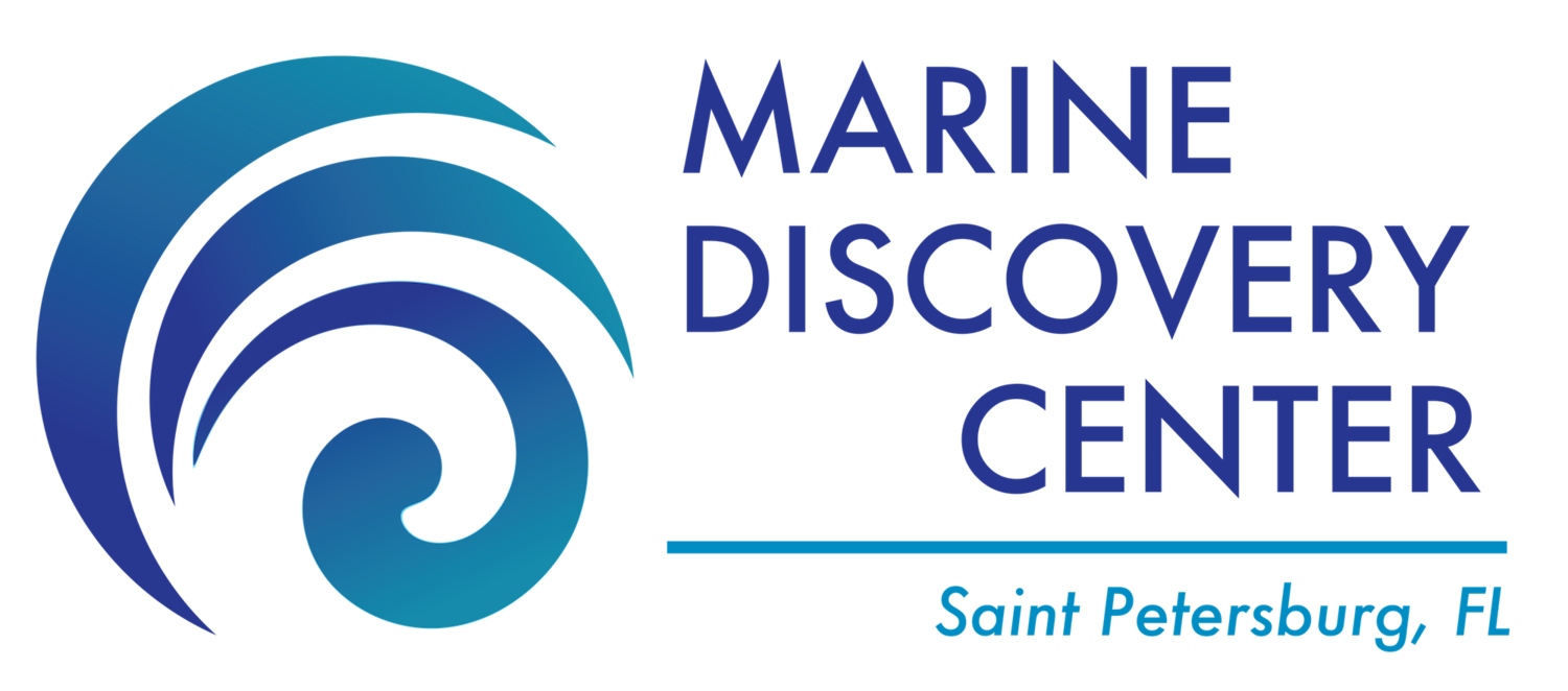 Marine Discovery Center, St. Petersburg FL