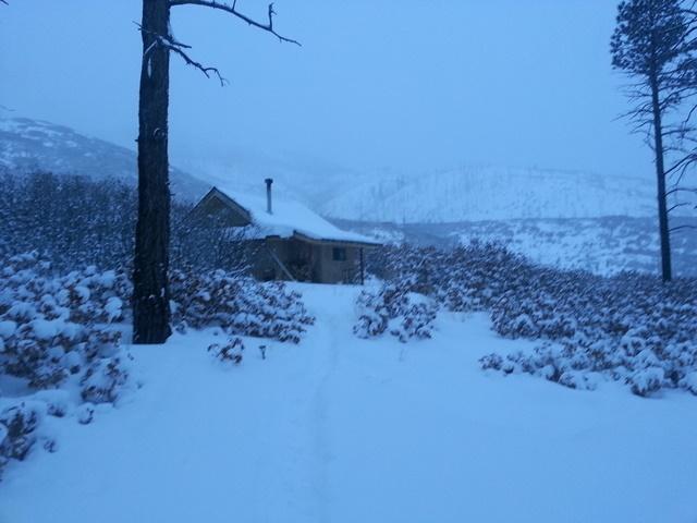 snowy Lama.jpg