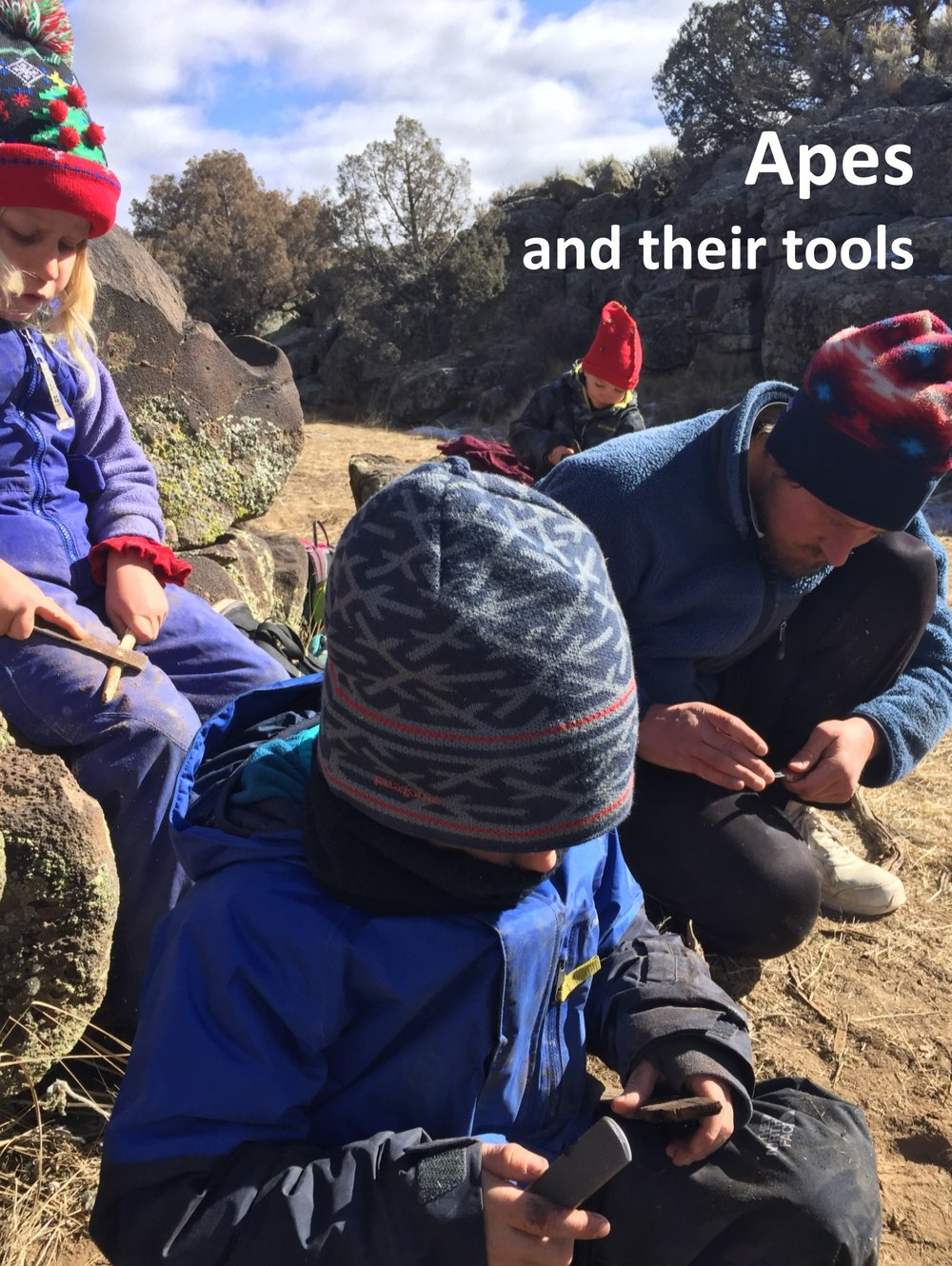 Apes and their tools.jpg