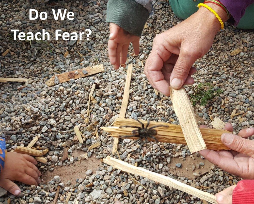 Do we teach fear.jpg