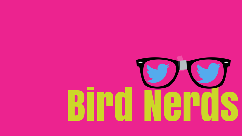 bird nerds logo.png