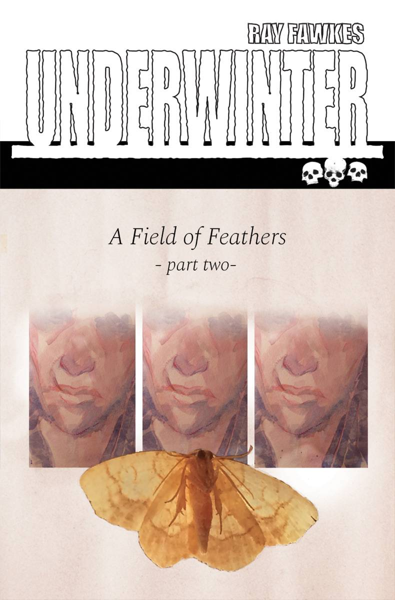 UNDERWINTER FIELD OF FEATHERS 2.jpg