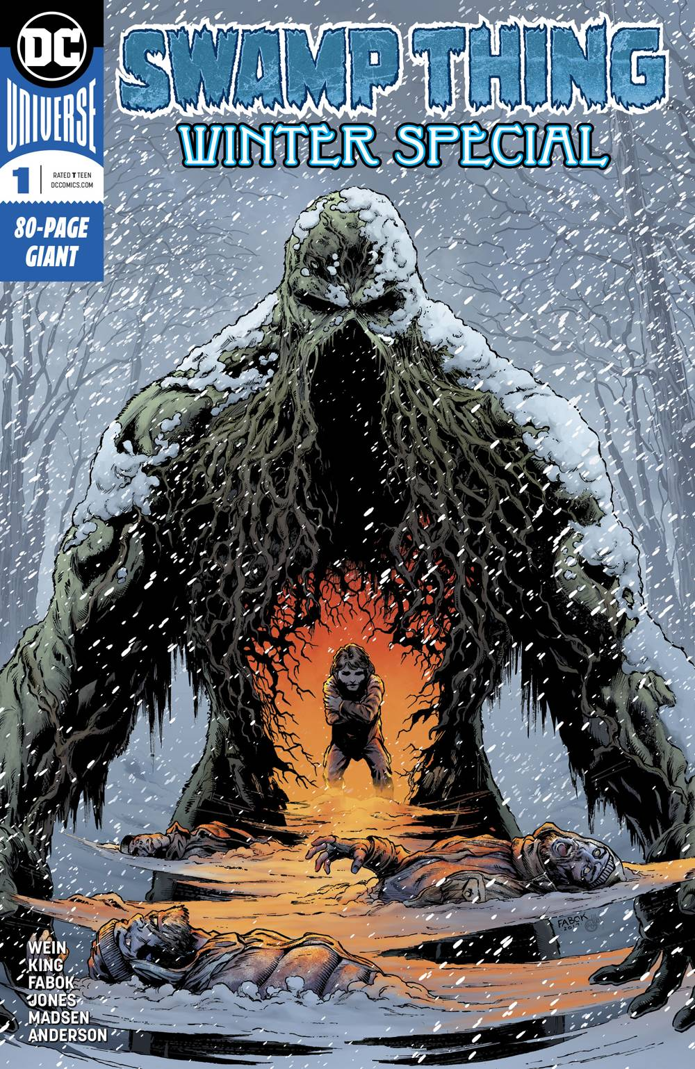 SWAMP THING WINTER SPECIAL 1.jpg