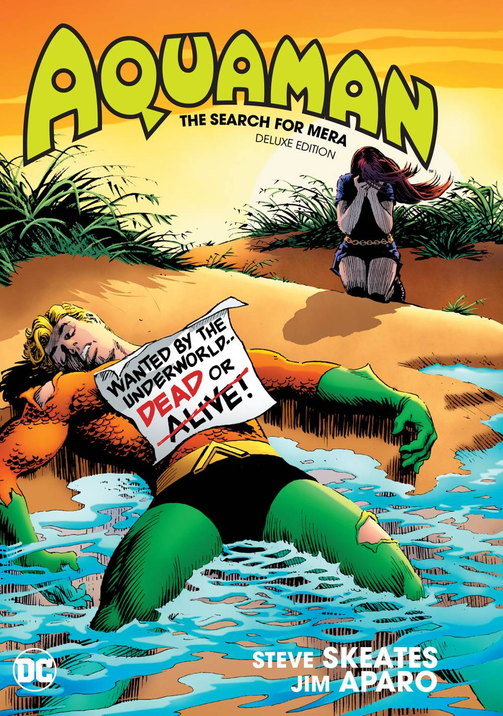 AQUAMAN THE SEARCH FOR MERA DELUXE ED HC.jpg