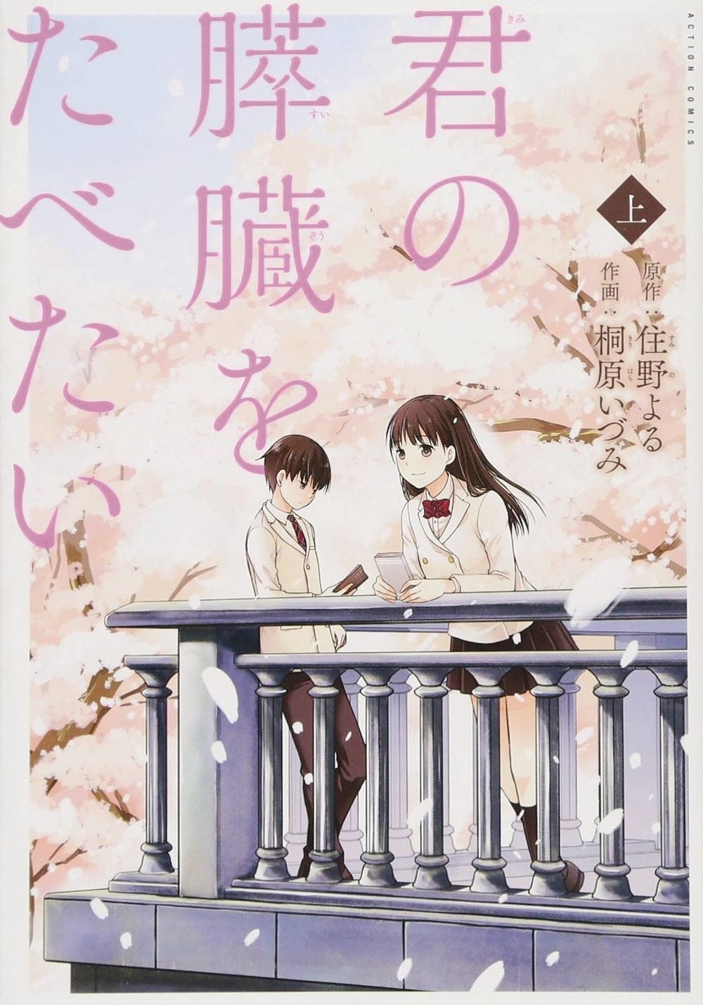 I WANT TO EAT YOUR PANCREAS GN 1.jpg