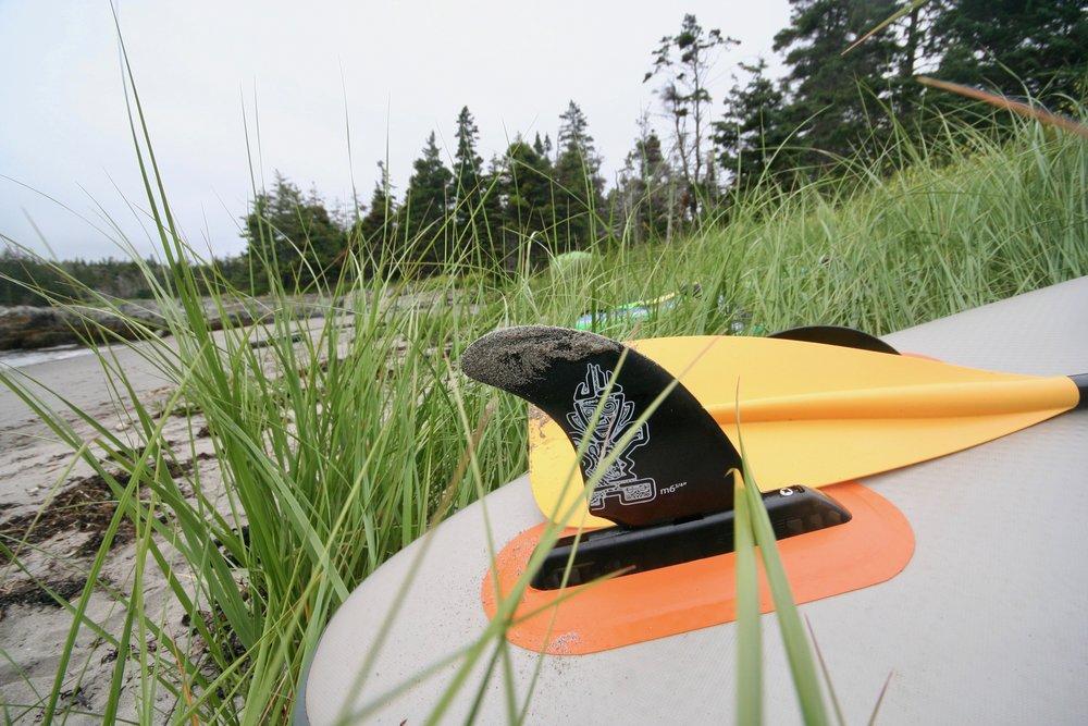 Nova Scotia Paddleboarding