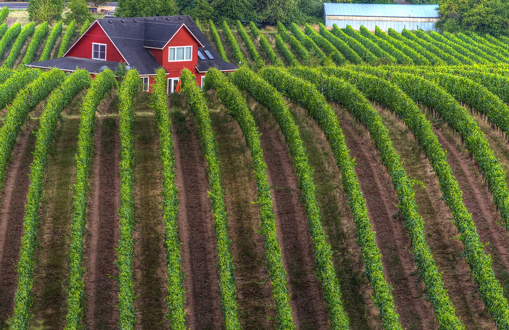 EOT_WINE_MAIN-Sokol-blosser-winery-red-house-1.jpg