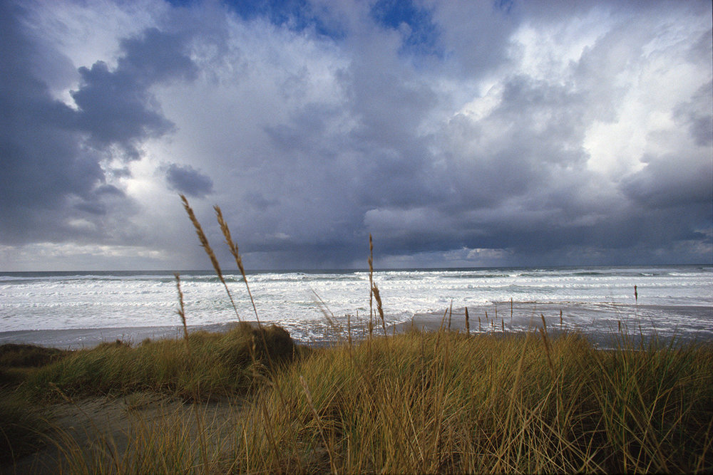 EOT_COAST_Grass-and-storm-clouds-oregon-coast.jpg