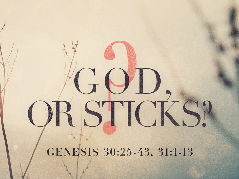 God-or-Sticks_t.jpg