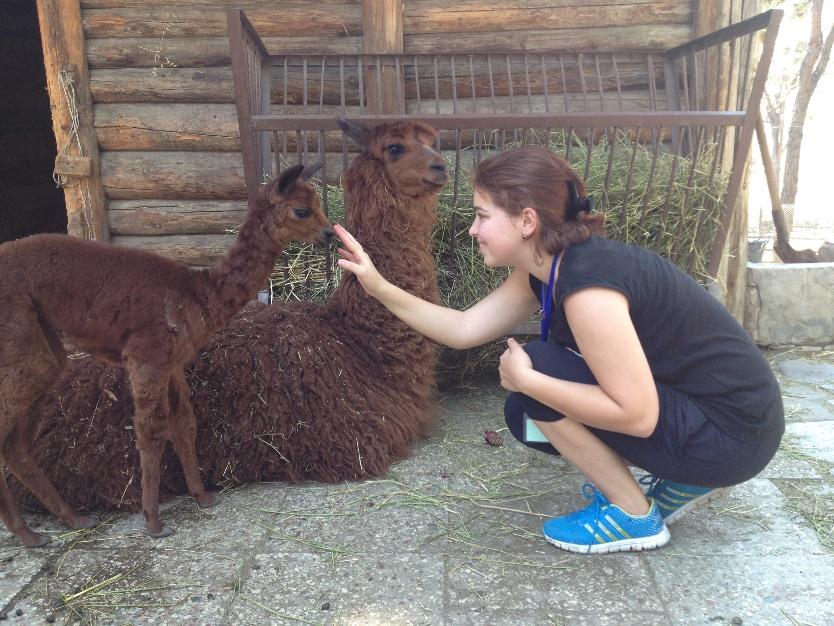 Working as an intern in Tbilisi zoo .
