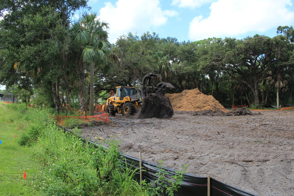 A bulldozer sweeps through the dirt to collect roots and hidden branches.