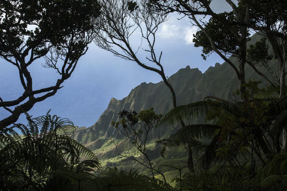 Kauai8_ss.jpg