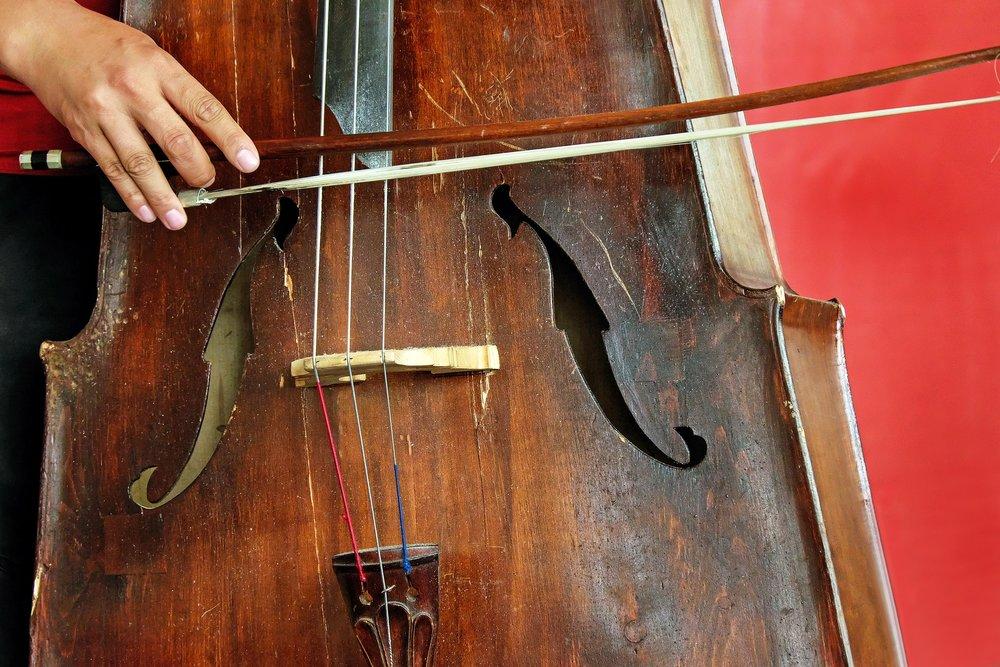cello-1606337_1920.jpg