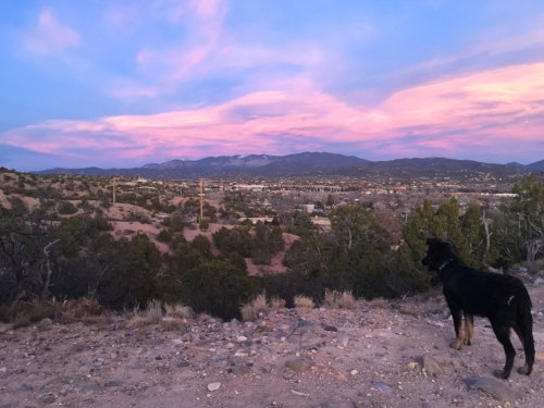 Dogs and humans will enjoy the sunset views from the Frank Ortiz dog park