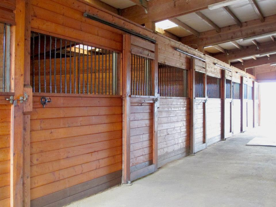 Spacious Stalls