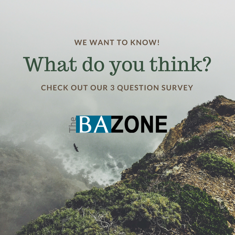 bazone_survey.png