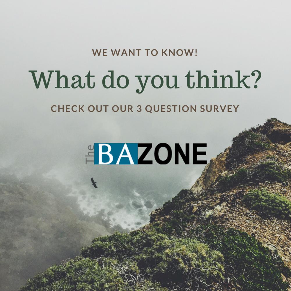 bazone_survey.png