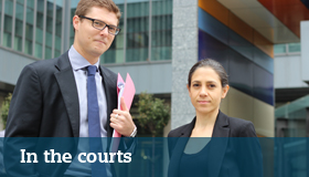 Inthecourts
