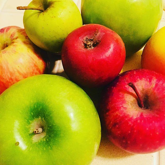Hand-picked apples  @glenoaksfarms #apples #freshfruit #appleseason  #handpicked #alltheapples
