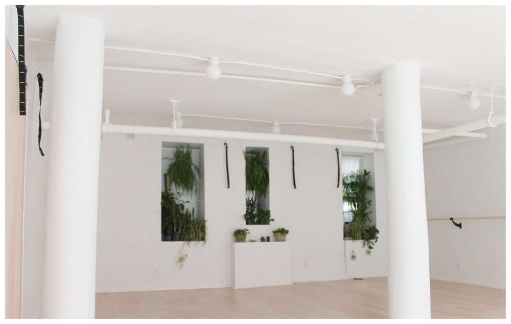 Our studio: An open, safe space that allows you to explore both mind & body.