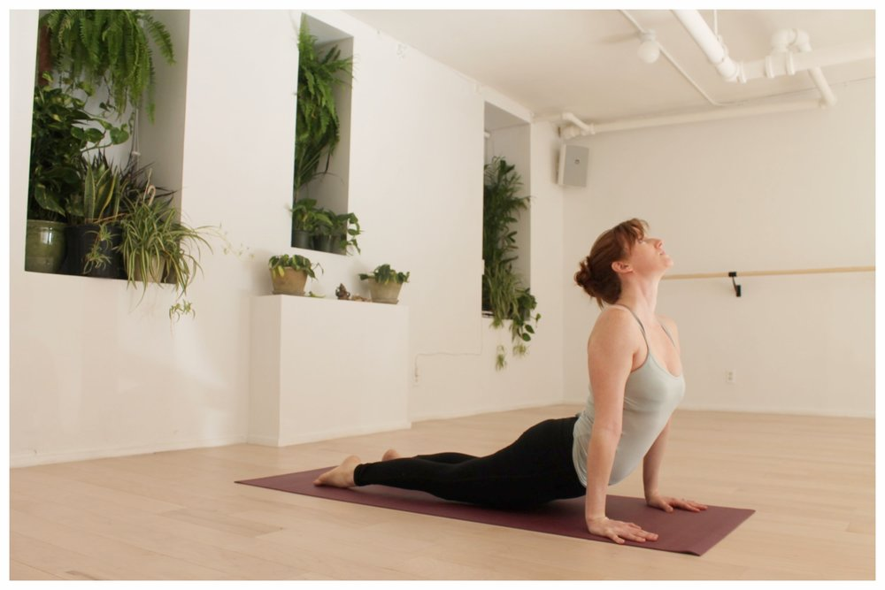 Hatha: A slow moving class that is perfect for beginners. Conscious breathing combined with a sequence of poses held for longer amount of time.