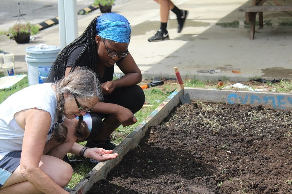 Planting the love between our brothers and our sisters
