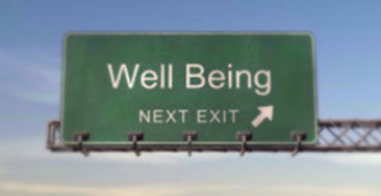 Welcome to Wellness  What does it mean to be well?